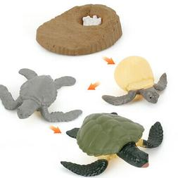 Kids Toddlers Simulation Animals Growth Cycle Figure Toy Mod